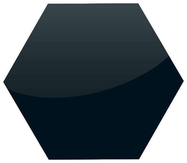 Black-Ral-9005